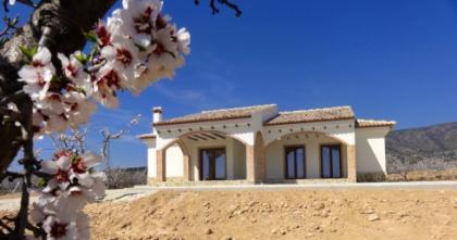 3 bed Villa in Pinoso